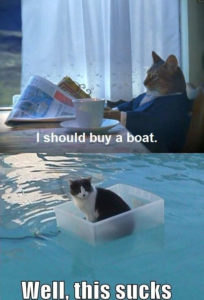I should buy a boat cat meme. Well this sucks version.